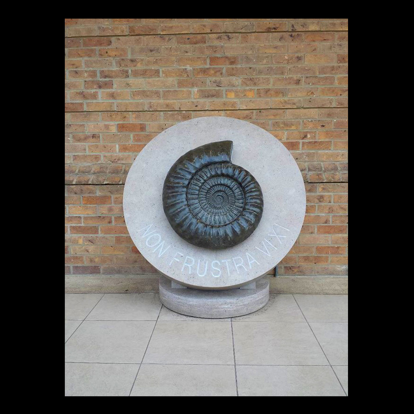 Display - St Hilda's College, Oxford - Large Ammonite Fossil (College Symbol) Displayed on 1.2m high Circular Stone Plinth - Design & Drawings.